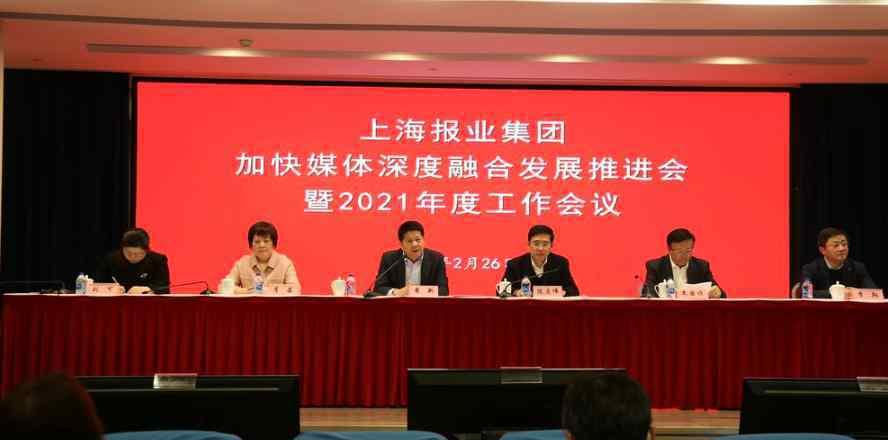 裘新 裘新:上报集团今年规划五大资本项目